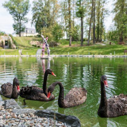 Jak przedłużyć sobie lato w Zameczku Piotrowice koło Karwiny?